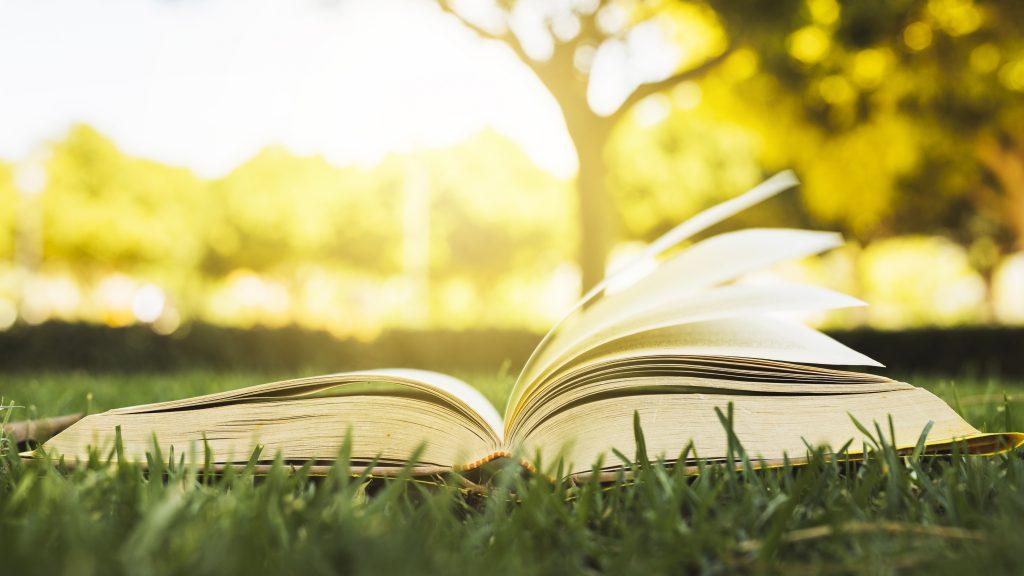 Libri sui viaggi per amare il viaggio